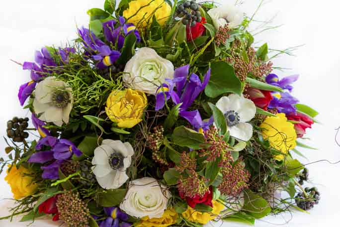 Florist for Sale on the Gold Coast by Interbiz Business Brokers