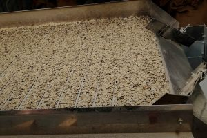 Coffee-Roasting-Business-for-sale-#303606-coffee-beans